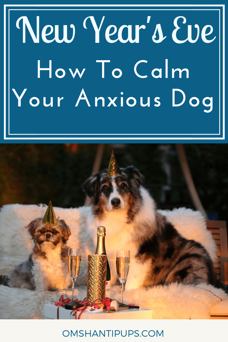 The holiday season is in full swing, and there's one more happening soon – New Year's Eve! But for many pups, this is one of the scariest days of the year. Here are 4 products that will help keep them safe, secure, and soothe their anxiety. #dogs #doganxiety #doghealth