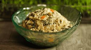 Easy, Healthy Instant Pot Dog Food Recipe