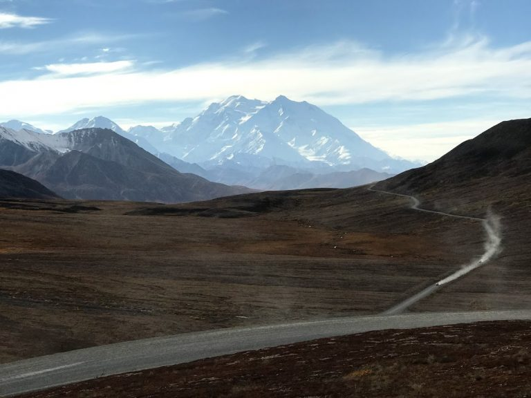 Denali Road Lottery Tips & Tricks With Dogs