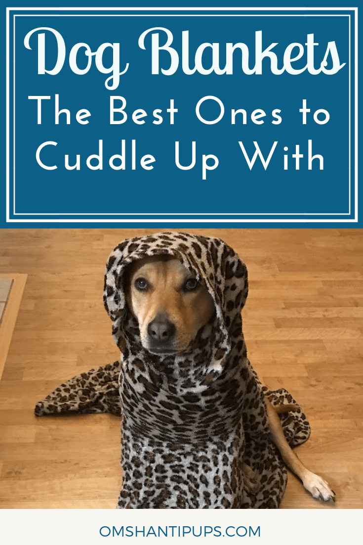 We're HUGE fans of blankets in this house. They're warm, cozy, and oh so snuggly! Here's a list of the best dog blankets to cuddle with!