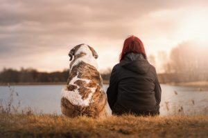 What Your Senior Dog Really Wants You To Know