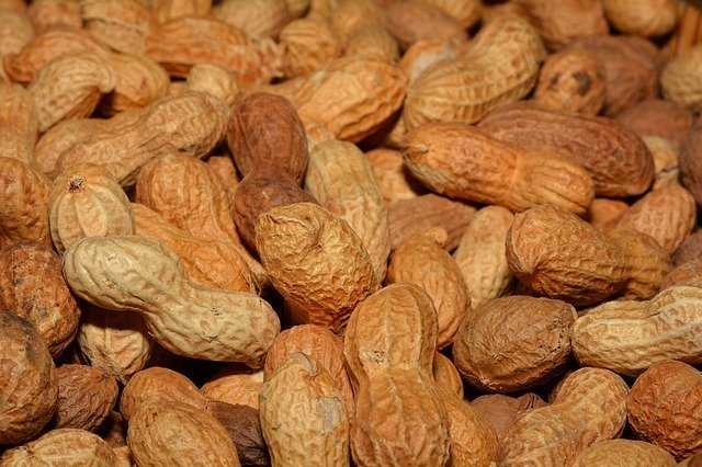 Can dogs eat boiled peanuts? Are there side effects?