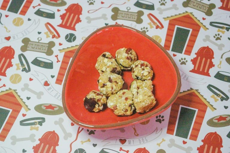 Easy Soft & Fruity Dog Treat Recipe