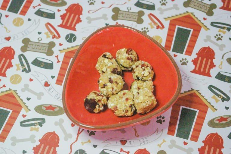 Easy Soft & Fruity Dog Treat Recipe