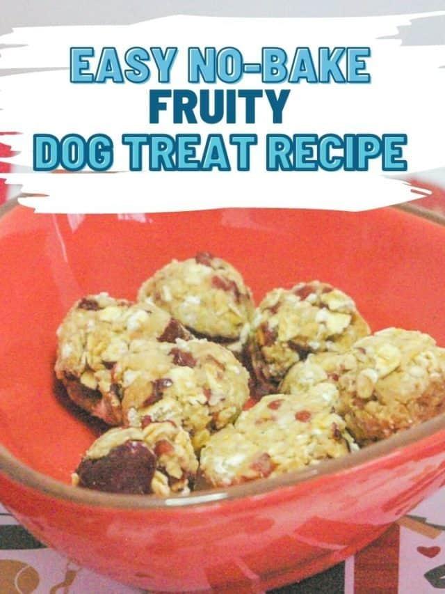 Yummy, Quick Fruity Dog Treat Recipe