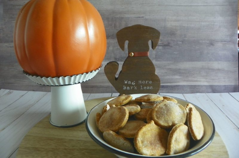 Perfectly Pumpkin Fall Dog Treats