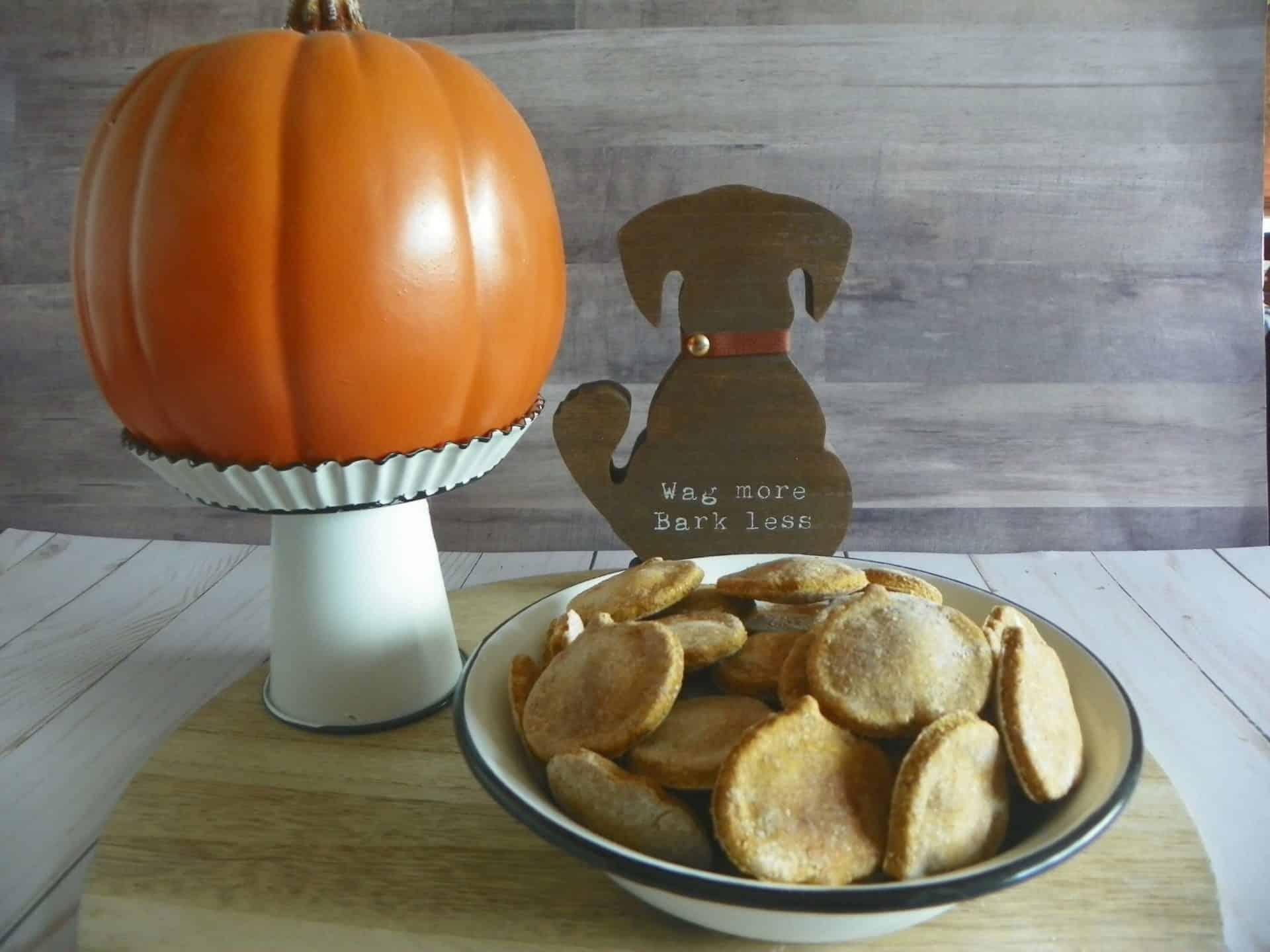 Pumpkin Dog Treat Recipe
