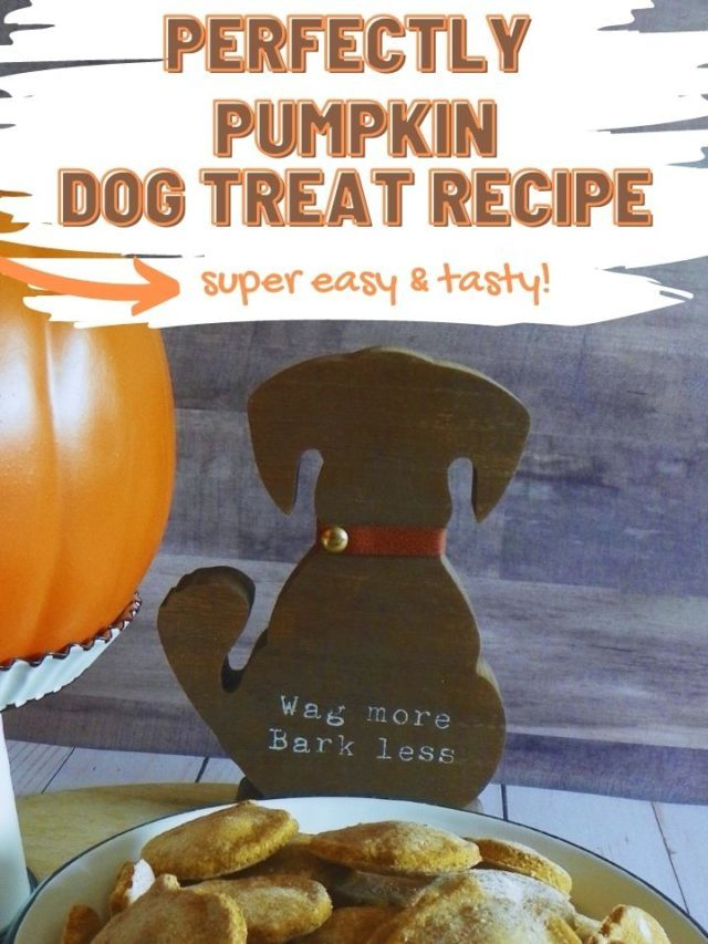 Perfectly Pumpkin Dog Treat Recipe